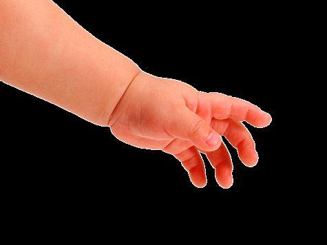 ВГлазове задержана семья, выбросившая новорожденного ребенка напомойку
