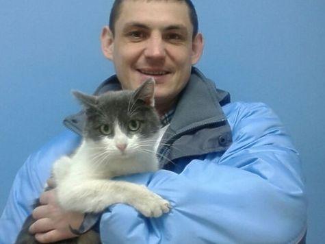 Работники автосервиса спасли кота, проехавшего 60км под крышкой капота автомобиля