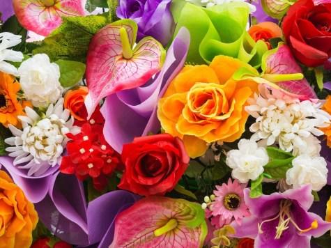 Россельхознадзор впреддверии 8Марта сжег 5 тыс. зараженных цветов